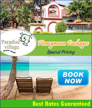 Goa Hotels : Goa Honeymoon Packages